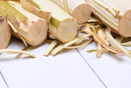 Willow Bark Extract 15% Salicin