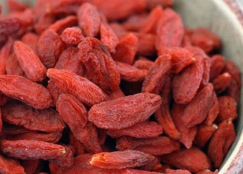 Wolfberry Extract ratio 5:1