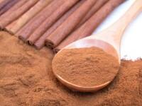 Cinnamon Bark Extract 10:1, spray dried