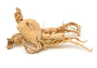 Ginseng Root Extract 3:1, ws