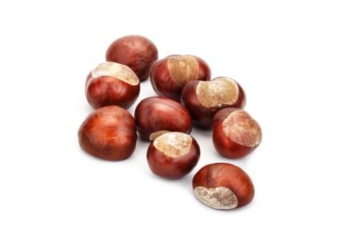 Horse Chestnut Extract min. 20 % Escin
