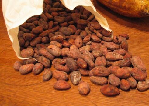 Rohkakao Bohnen Pulver min. 12% Polyphenole