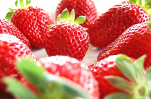 Erdbeer Pulver BIO, walzengetrocknet
