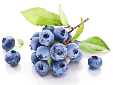 Blaubeeren Extrakt 25% Anthocyanidine , 120 mesh