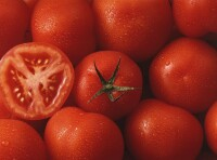 Tomaten Lycopin Pulver min. 5% nat. Lycopin