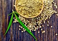 Hemp Protein Powder ~ 45 % Protein, organic