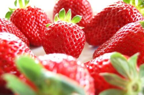 Strawberry Powder organic, 0-2 mm, freeze-dried