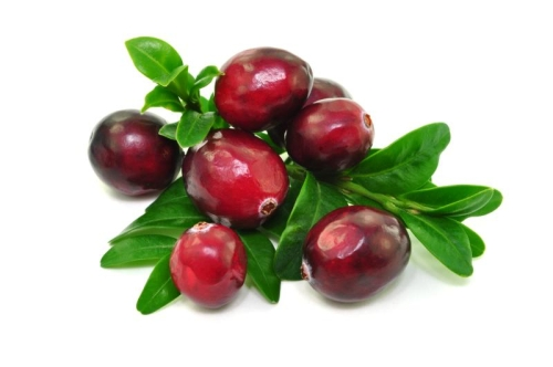 Mannose + Cranberry  Mix for instant drink