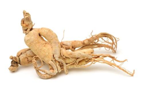 Ginseng Root Extract min. 8 % ginsenosides (UV)